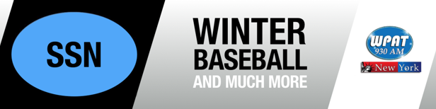 Winter League Baseball and More