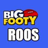 Big Footy Kangaroos