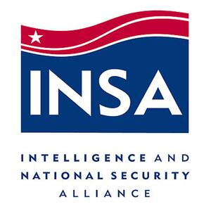 The INSA Report