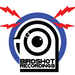 Birdshot recordings logo