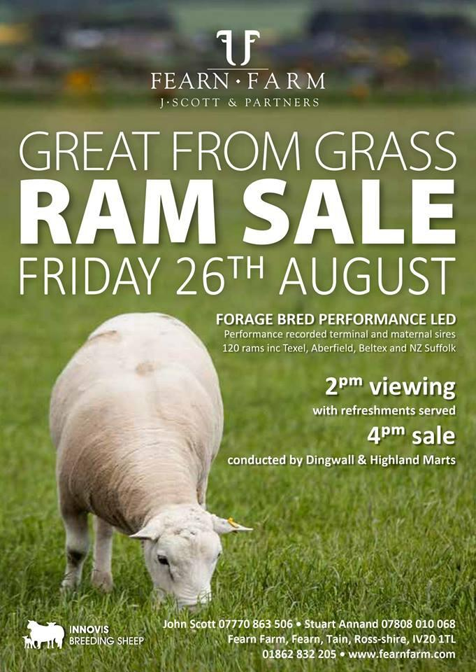 Audioboom / Friday 25th August is the 5th Annual on-farm Ram Sale at