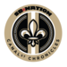 canal st chronicles logo