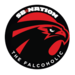 SB Nation Falcons
