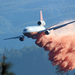 Rim Fire DC-10 Drop