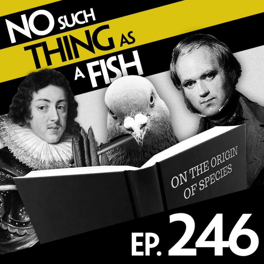 Episode 246: No Such Thing As The Worm Revolution