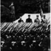 Military parade in Tokyo 19390522
