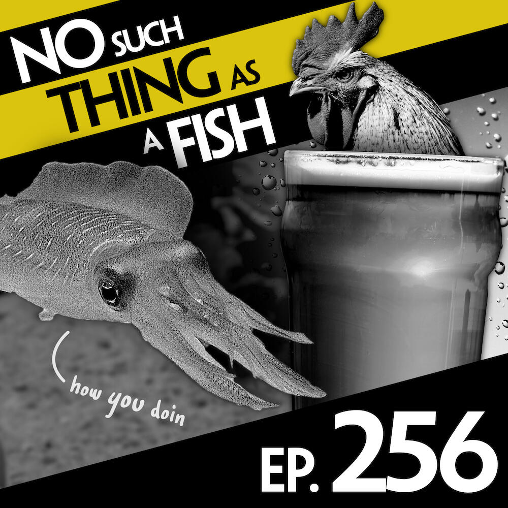 Episode 256: No Such Thing As A Puddle Photographer