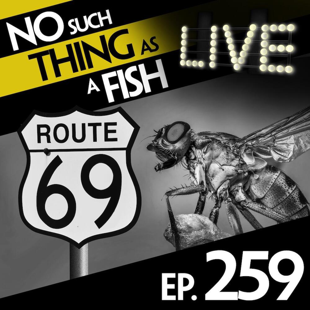 Episode 259: No Such Thing As Flyagra