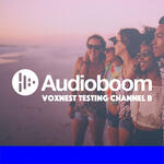 Voxnest Testing Channel B