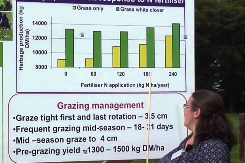 Audioboom / Why you should include white clover in grazing