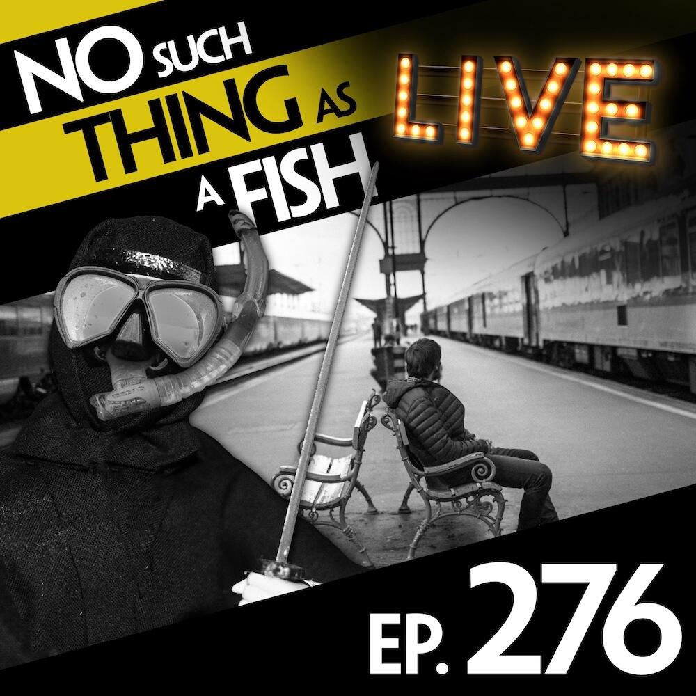Episode 276: No Such Thing As A Ninja With A Cat