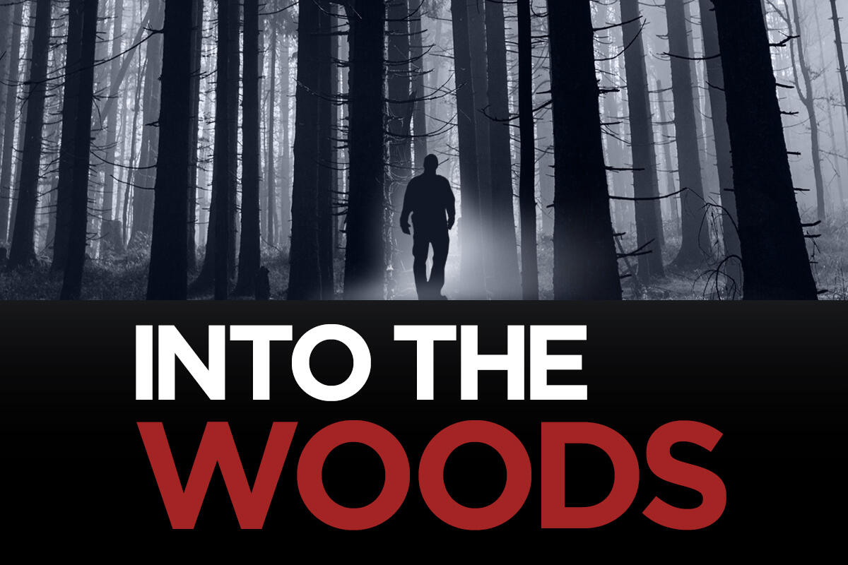 Missing Pieces: Into the Woods, Episode 6: Epilogue
