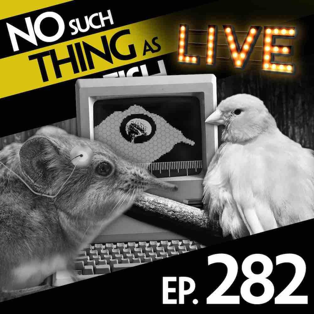 Episode 282: No Such Thing As A Bored Shrew