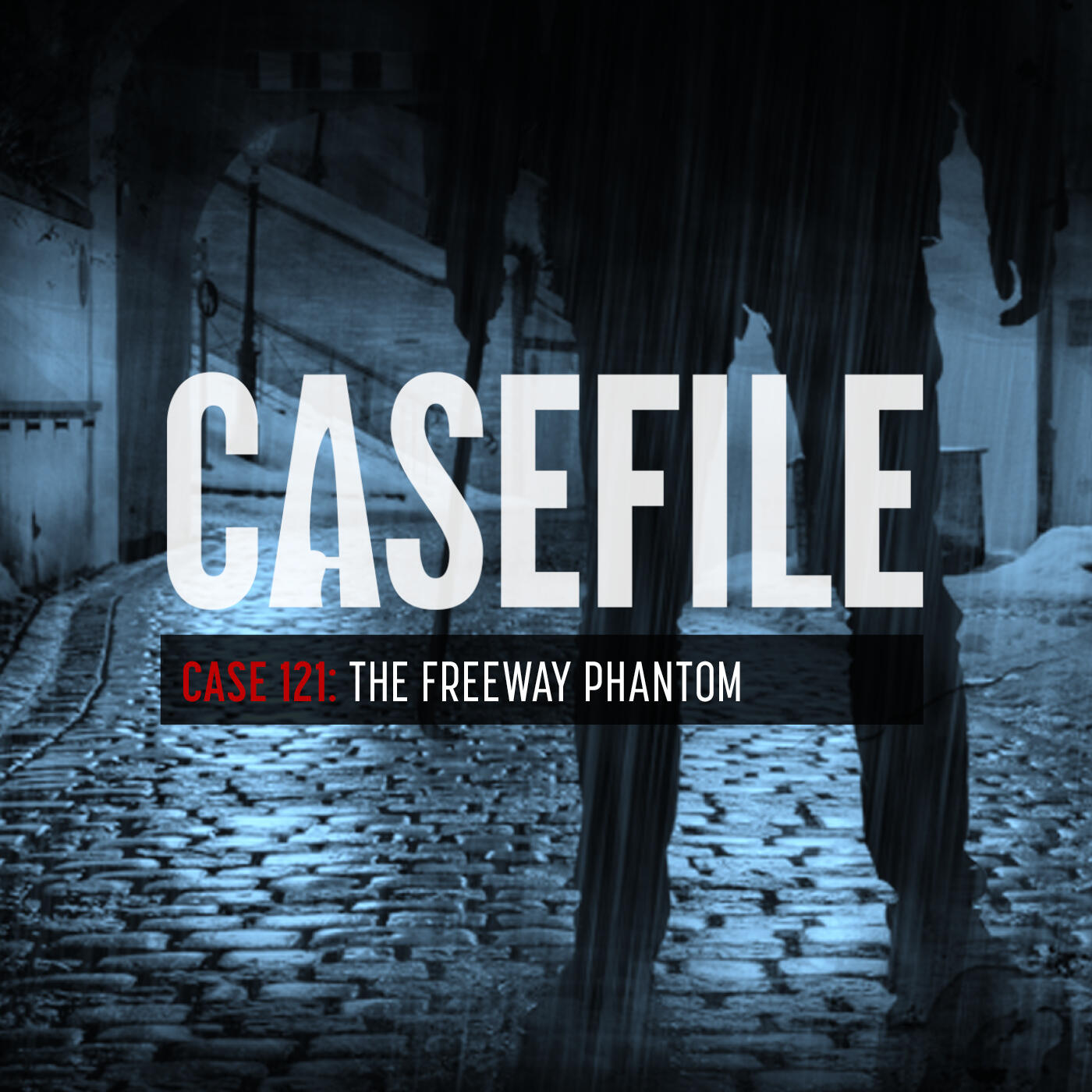 Case 121: The Freeway Phantom