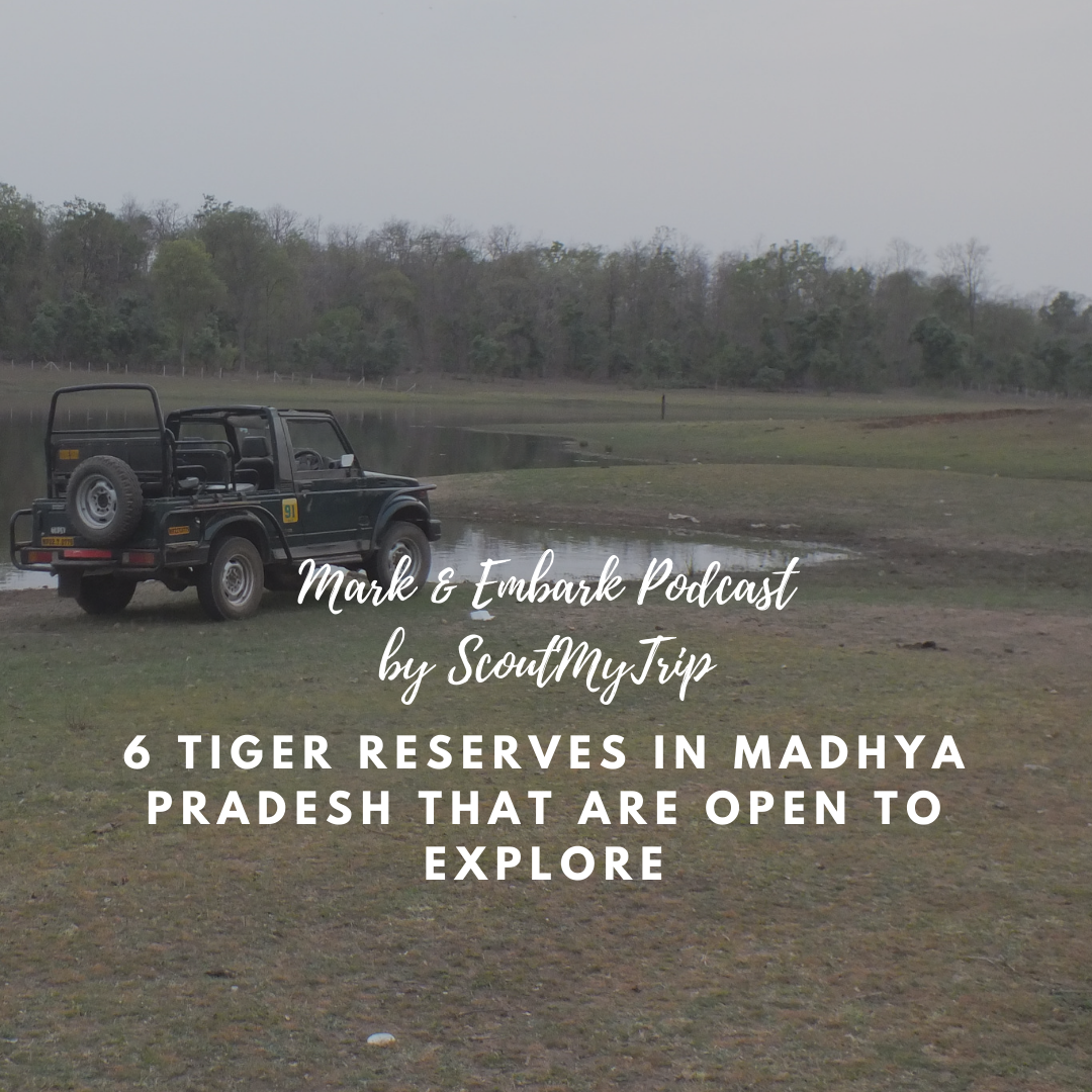 9: 6 Tiger Reserves in Madhya Pradesh That Are Open To Explore