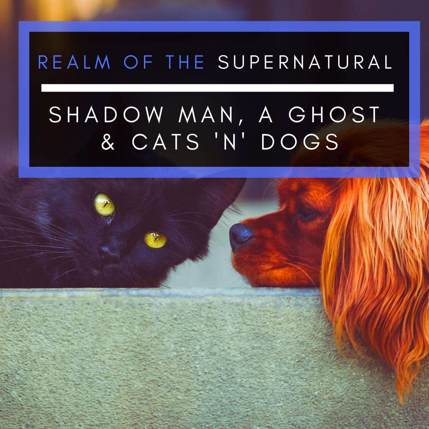 Ep 168 Shadow man, A Ghost & Cats 'n' Dogs