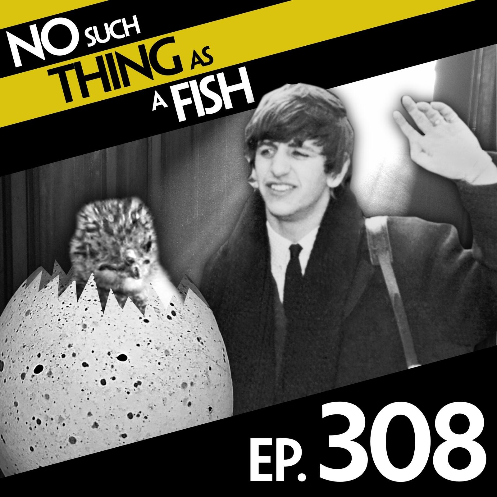 Episode 308: No Such Thing As The Land Of Flying Sheep