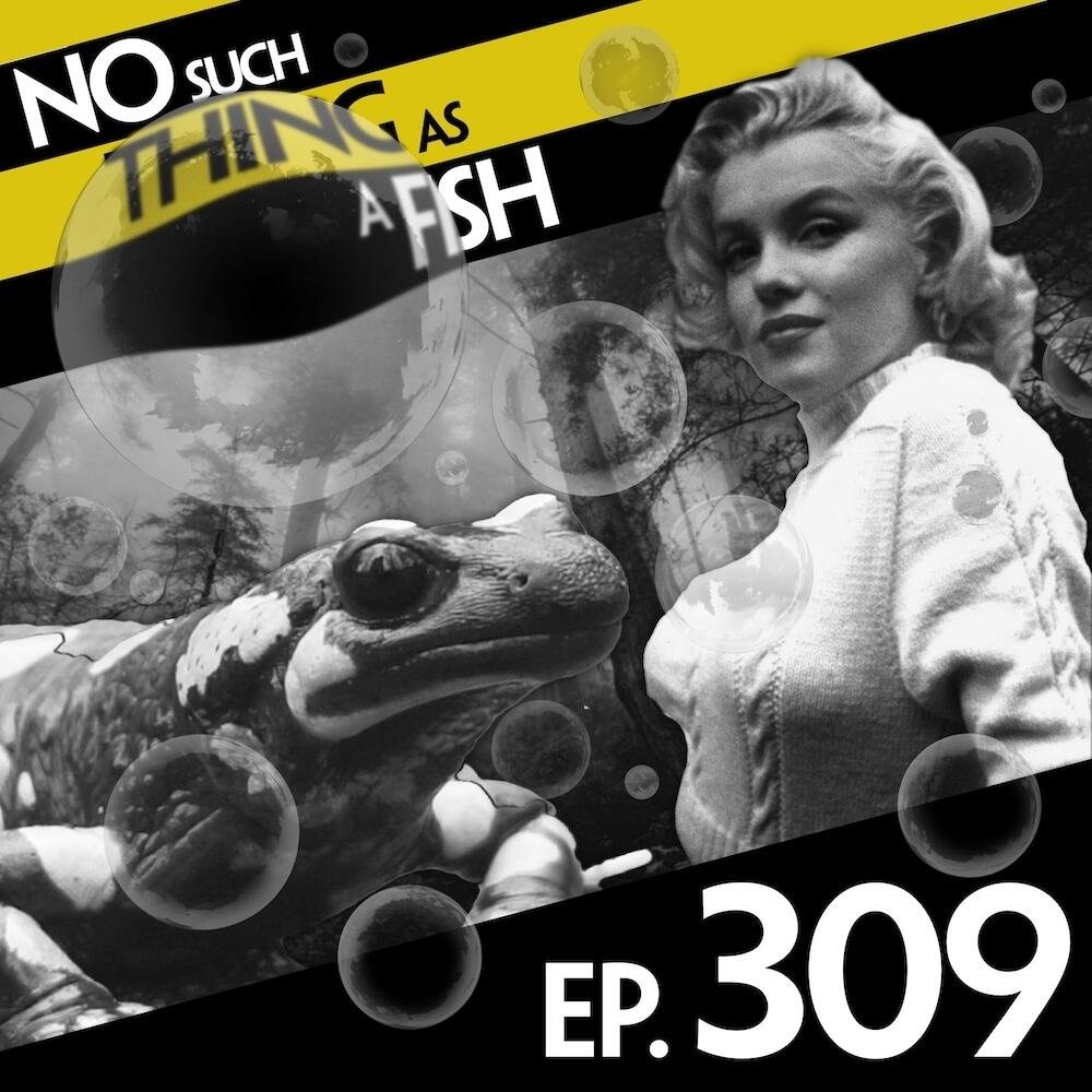 Episode 309: No Such Thing As The Best Bubble