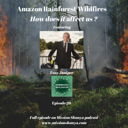 20: Amazon Rainforest Wildfires: How does it affect us?