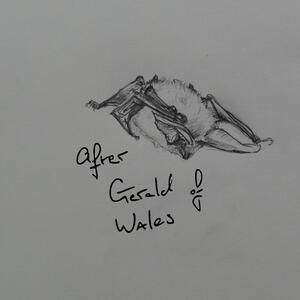 After Gerald of Wales