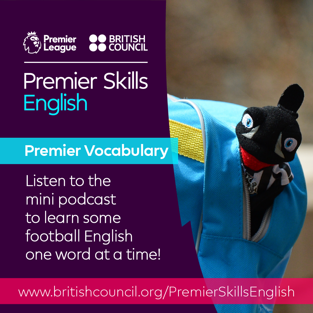Premier Vocabulary - Hard - In the bag