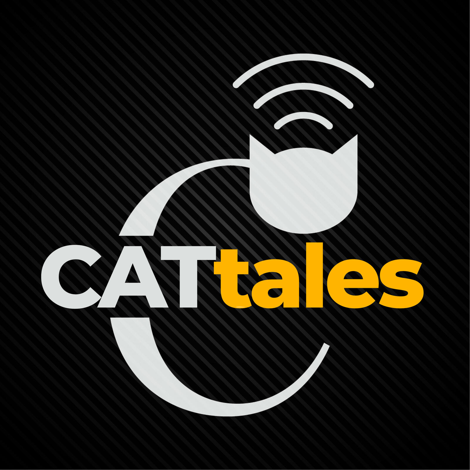 CATtales Album Art