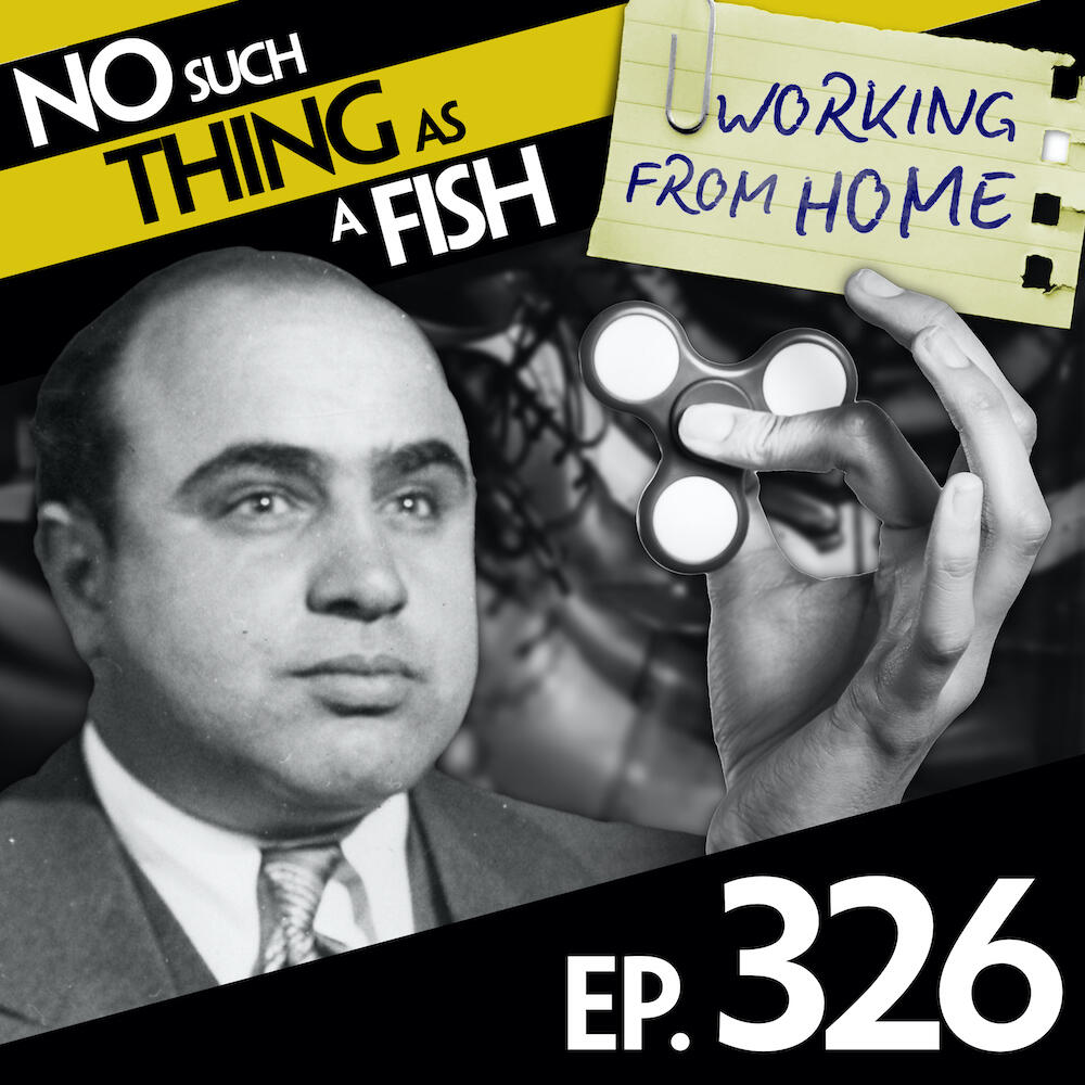 326: No Such Thing As an Infortunate Occurrence