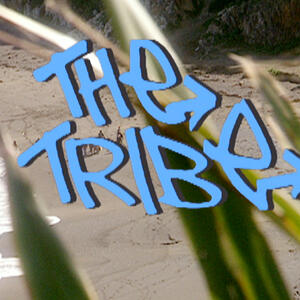 The Tribe: The Official Podcast