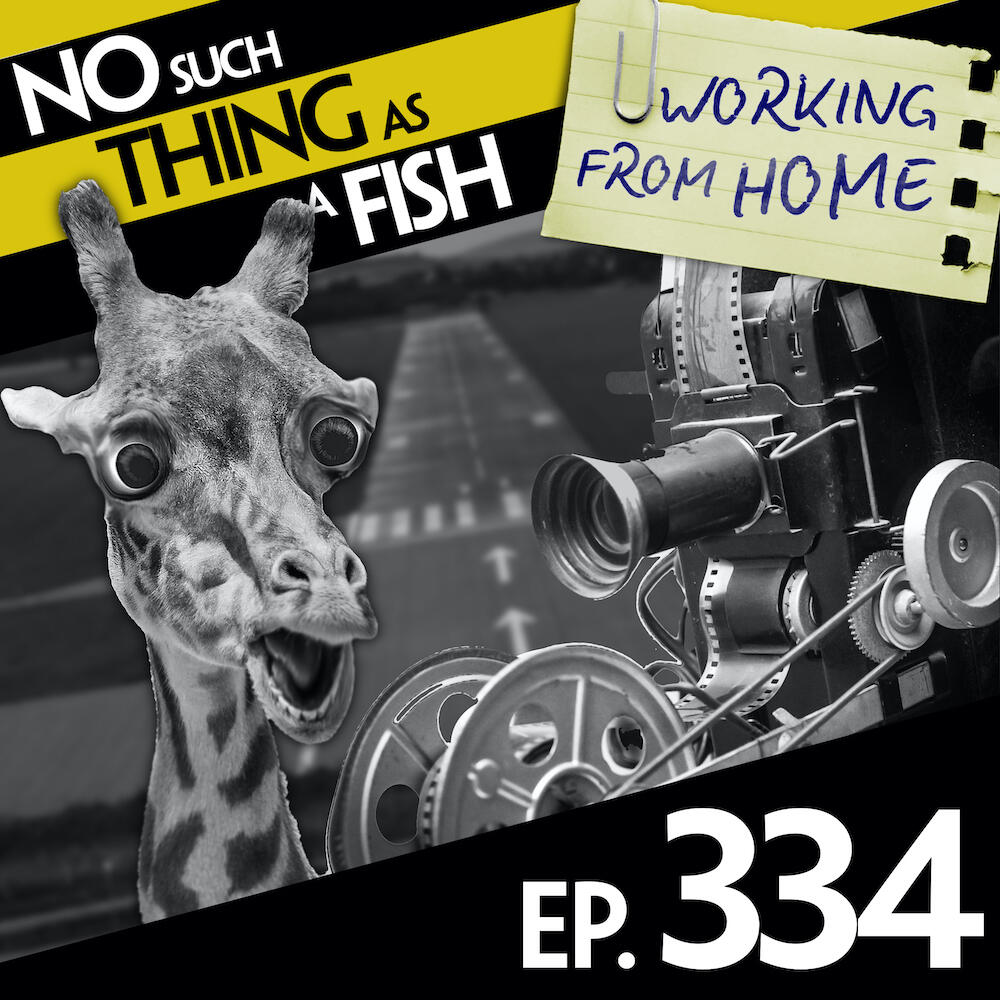 334: No Such Thing as a Babysitter's Trade Union