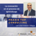PRAXIS TOP CONSULTING 1