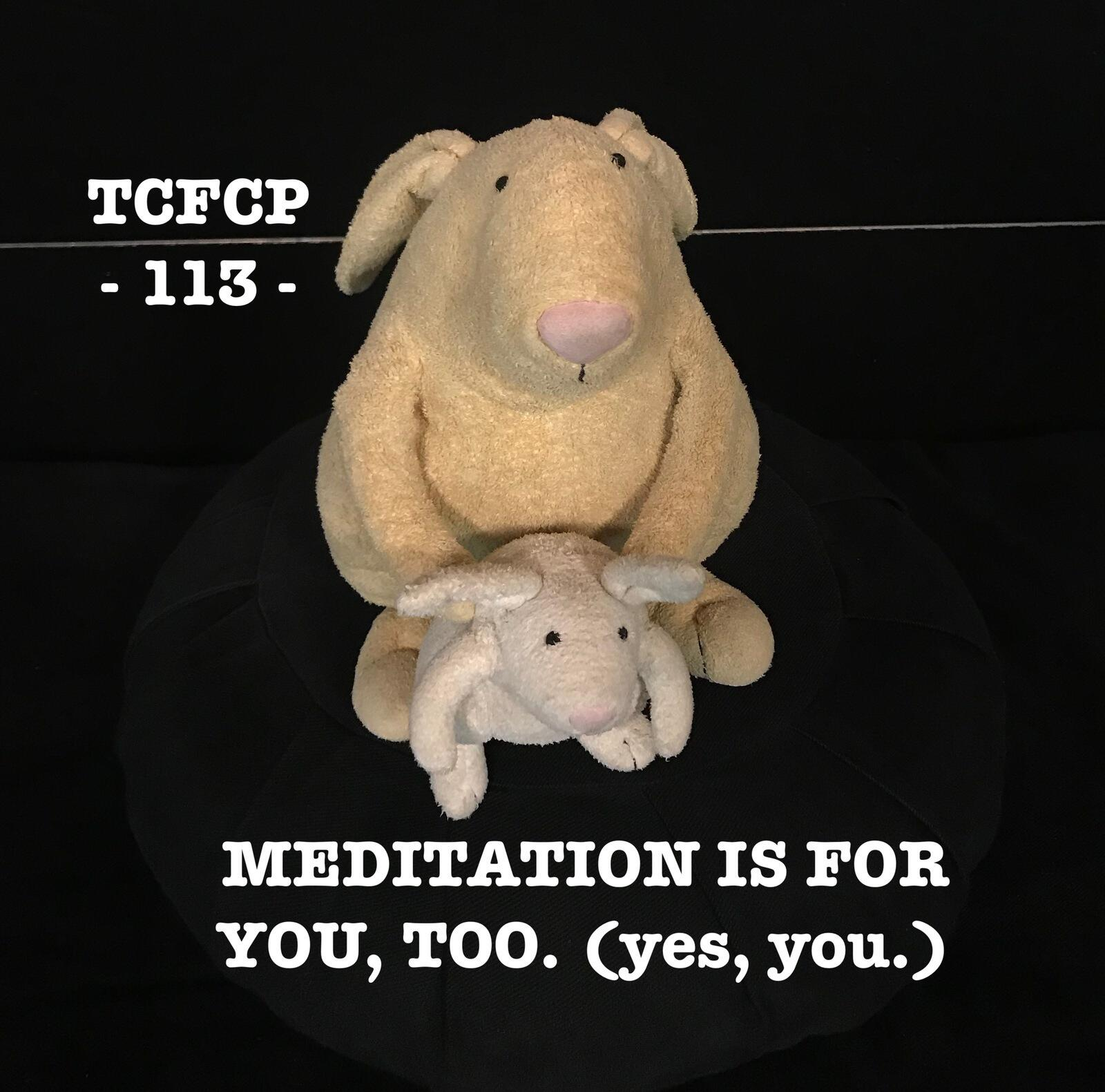 113: Meditation is For You, Too. (yes, you.)