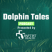New Dolphin Tales SoundCloud