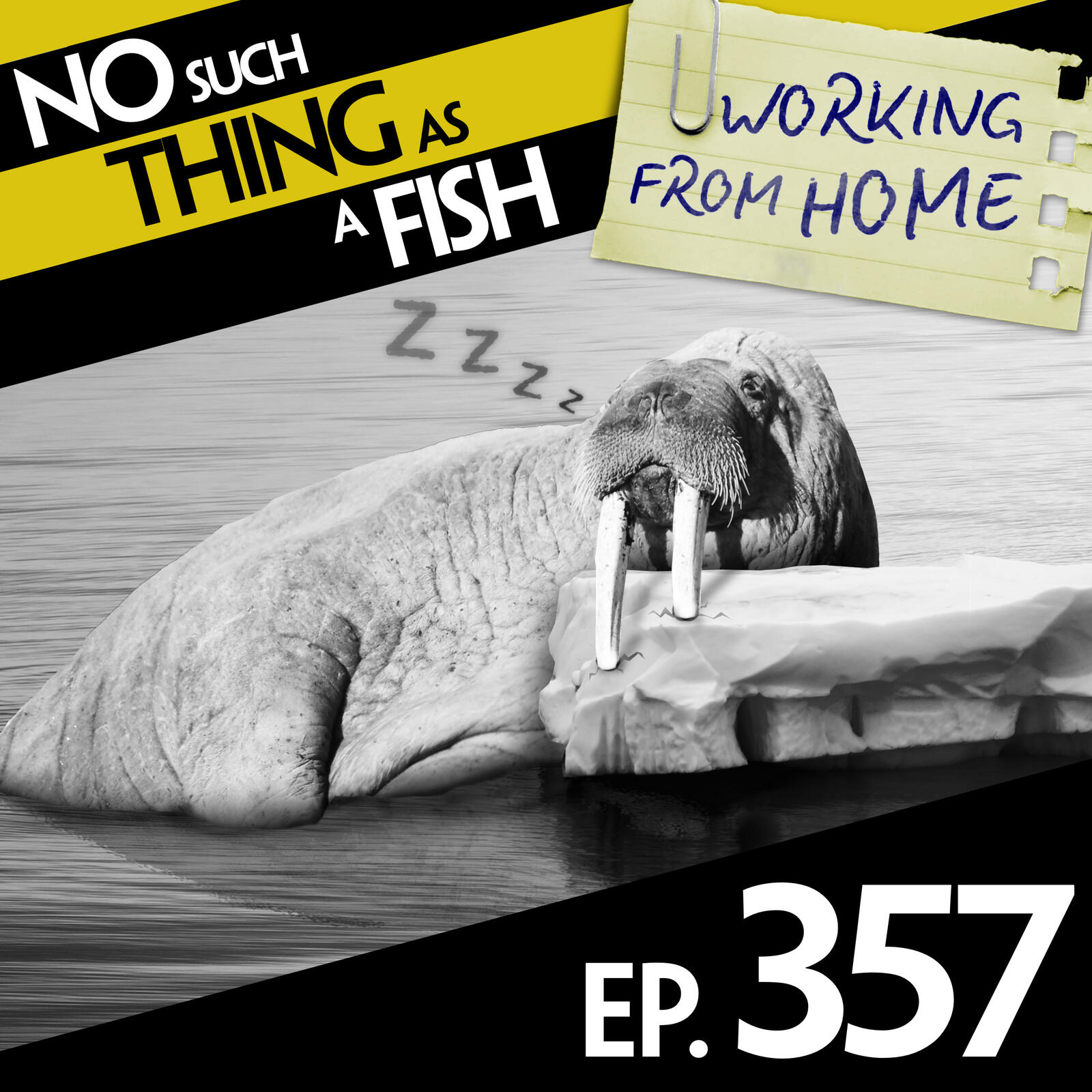 357: No Such Thing As A Rapidly Deflating Walrus