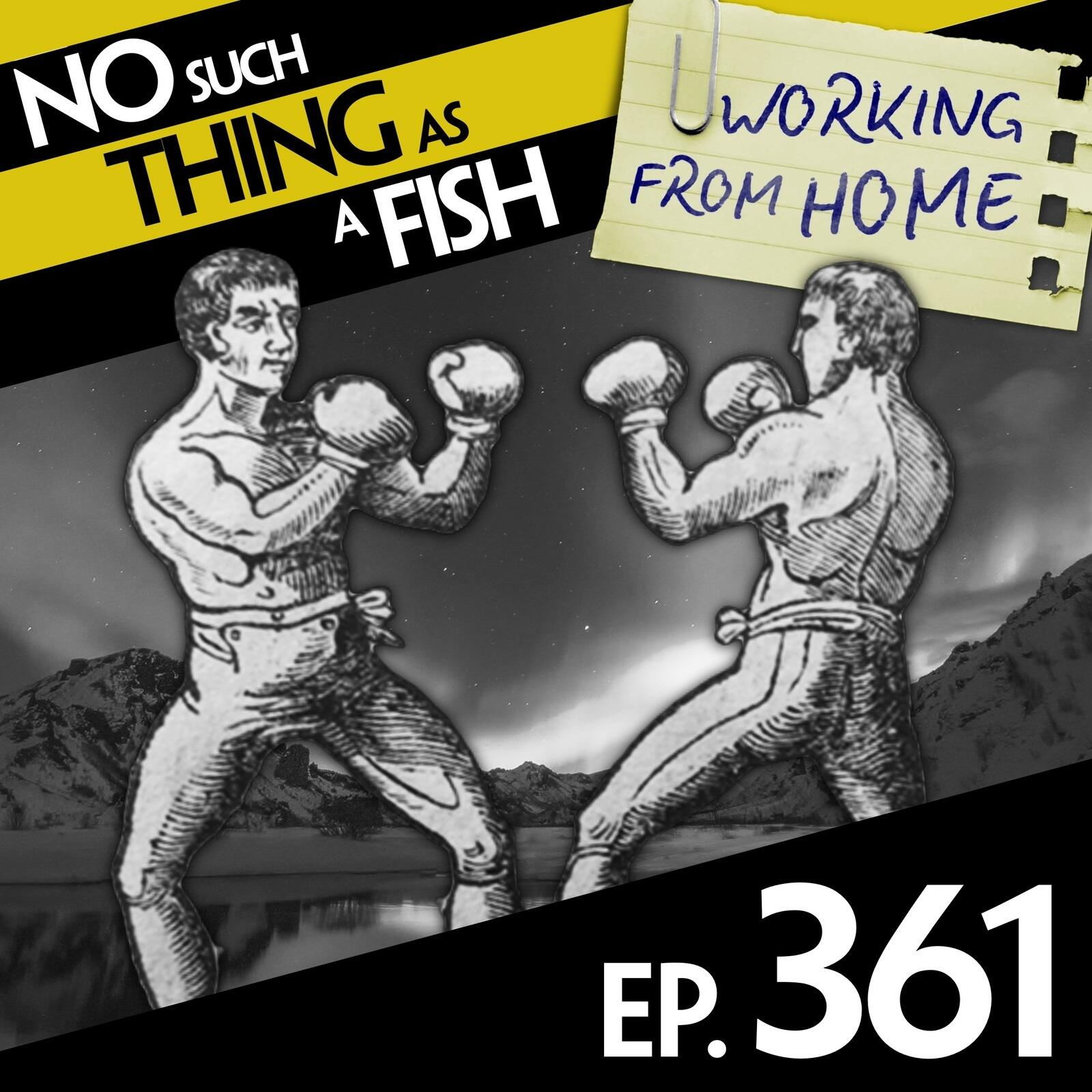 361: No Such Thing As The Mosquito Effect