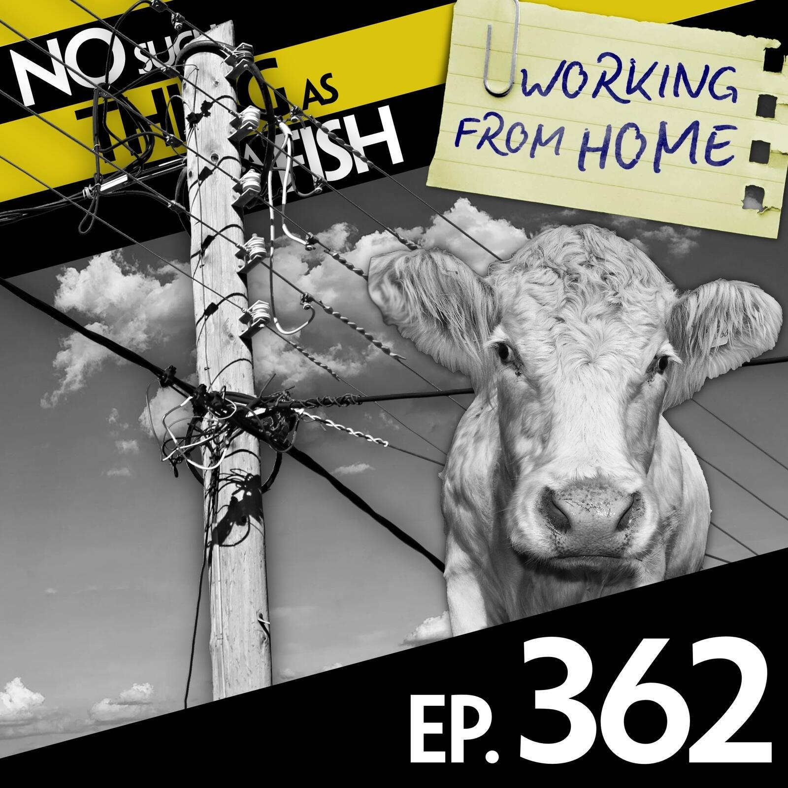 362: No Such Thing As Batman and Robinette