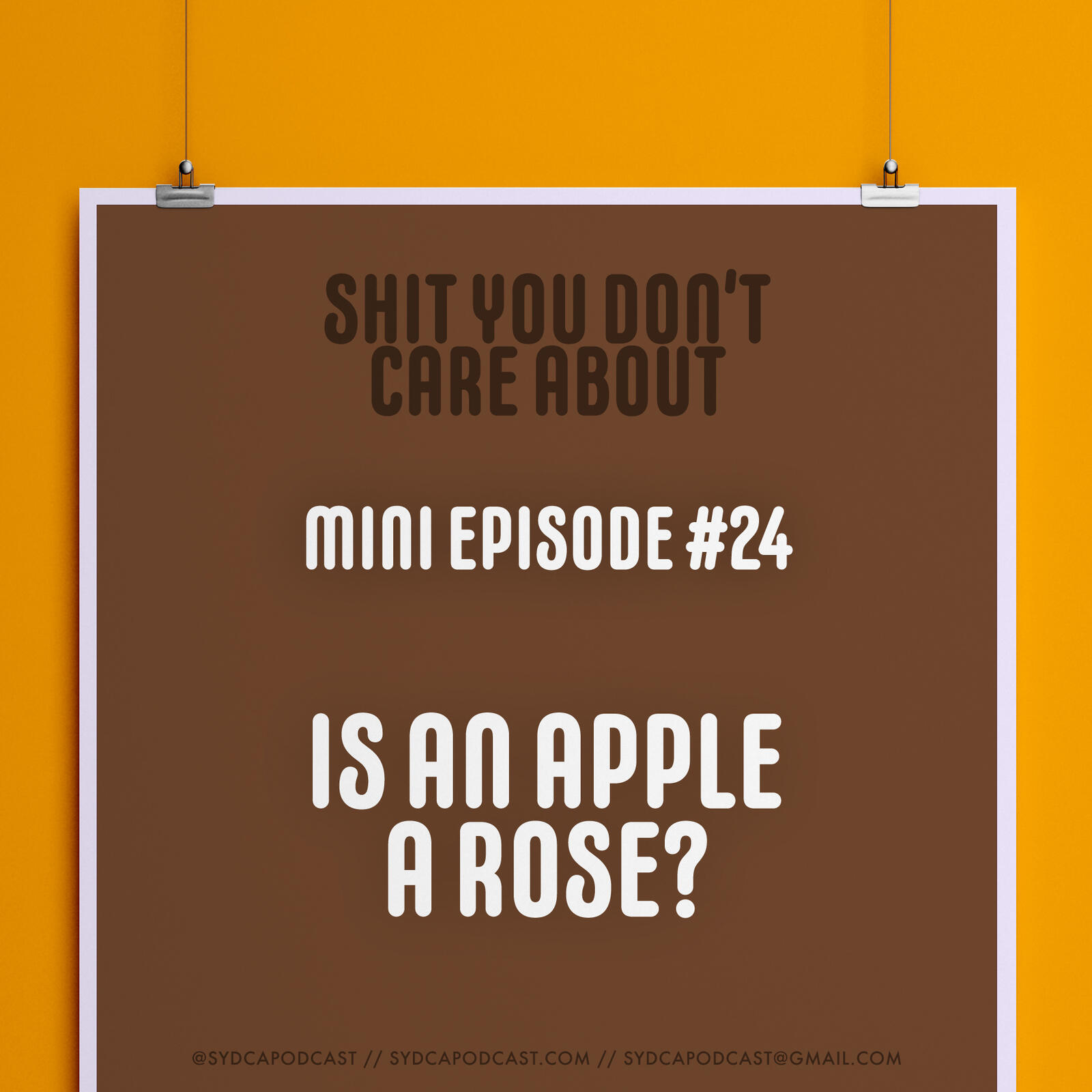 Mini-Episode #24: Is An Apple a Rose?