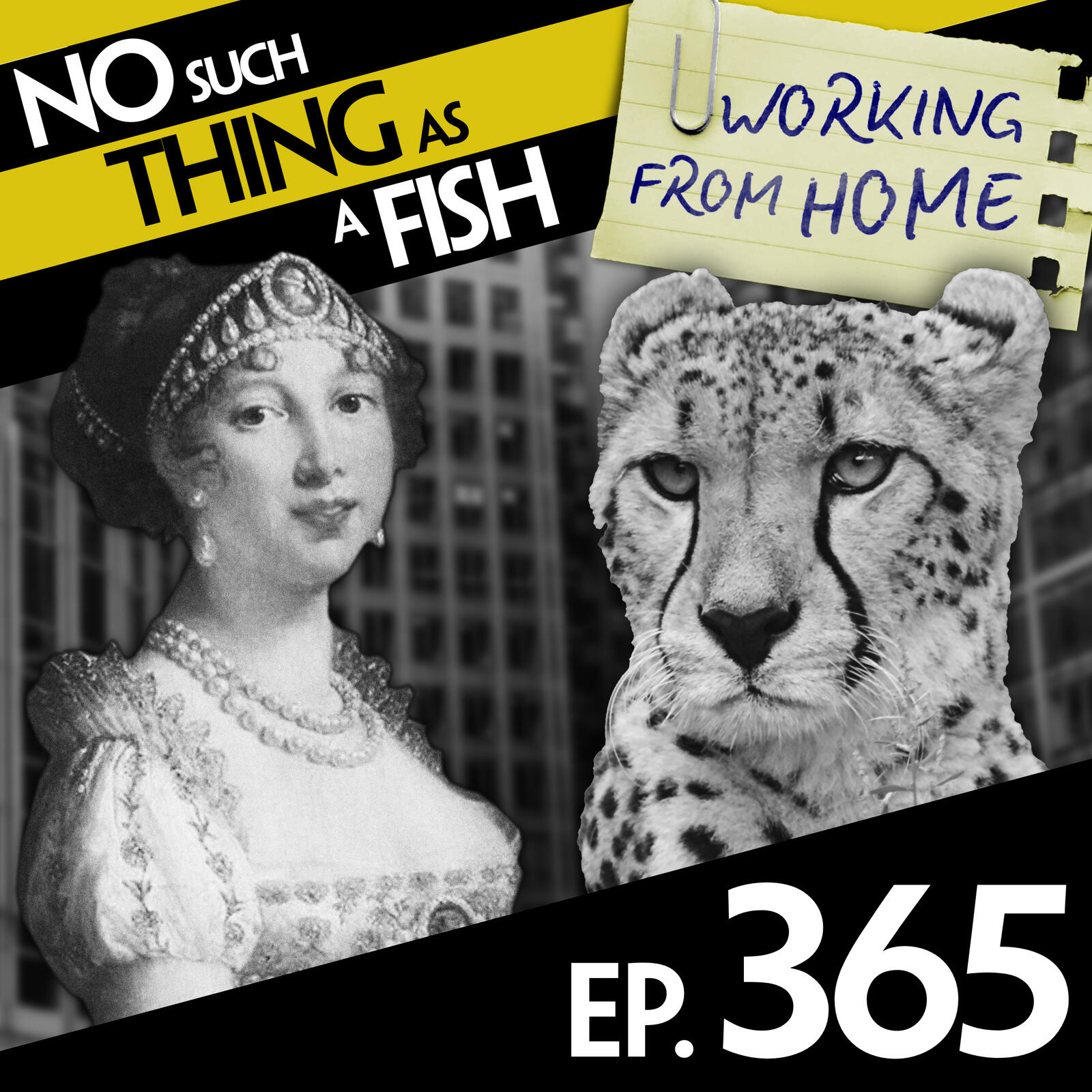 365: No Such Thing As A Smart Cheetah At Harvard