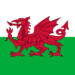 wales-flag-square-icon-256