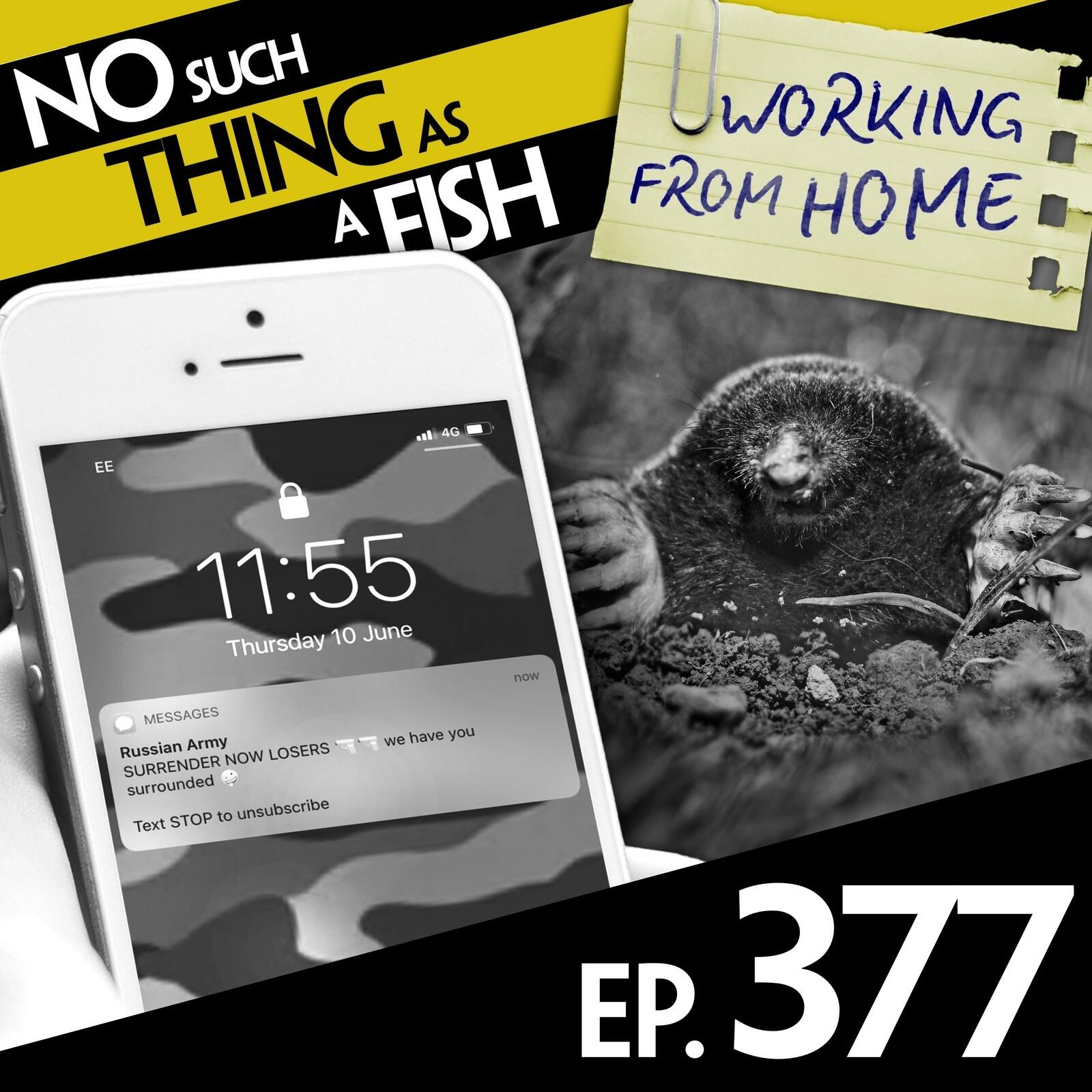 377: No Such Thing As The Mole Street Journal