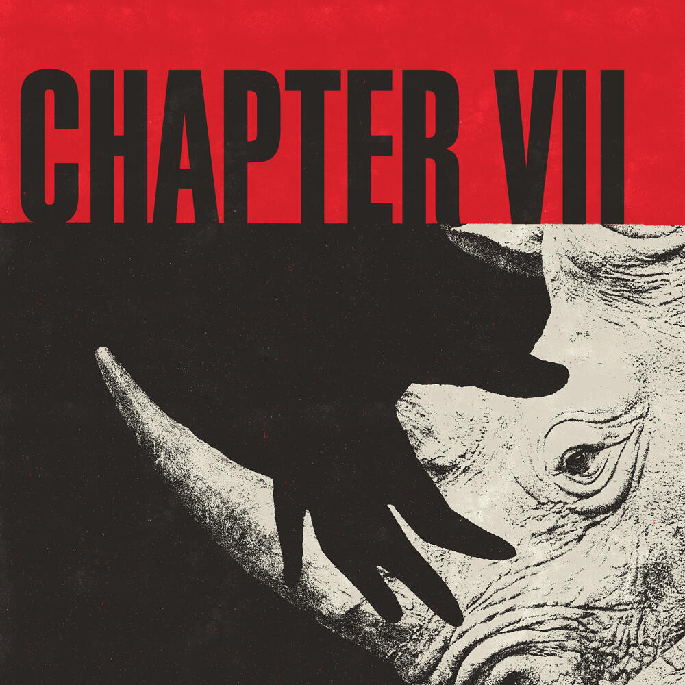 7: CHAPTER VII: I Am Not The We Of Anyone