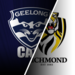vic-gee-krf-afl-matches-r19