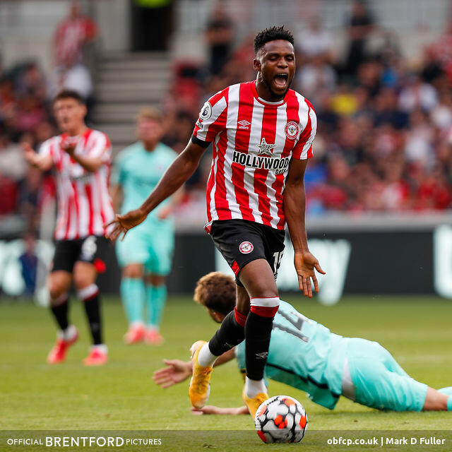 782: Bees Rue Missed Chances Against Brighton - Beesotted Weekend Review